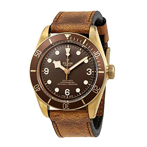 518xm0YS7ML - Tudor Heritage Black Bay Bronze 79250BM Automatic Men's Watch