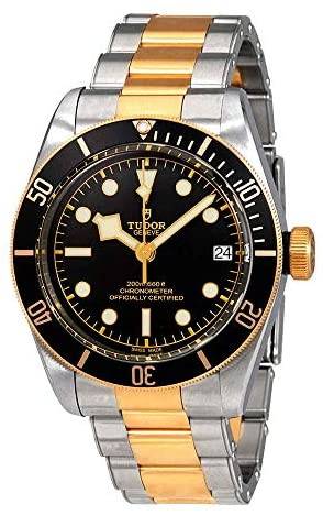 518Q9GtbtuL. AC  - Tudor Heritage Black Bay Yellow Gold and Stainless Steel 41mm Men's Watch 79733N-0002
